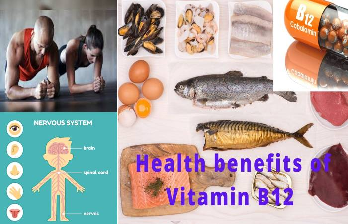 vitamin b12