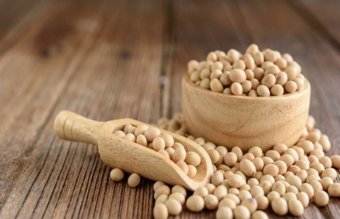 soybeans